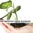 Patented Proprietary Green Technology